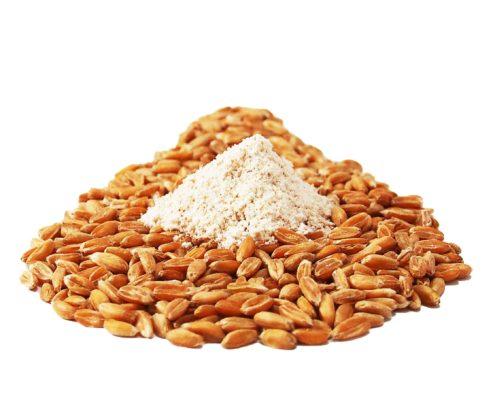 Weizenarten Dinkel Getreidekoerner