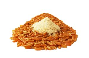 Weizenarten Kamut Getreidekoerner