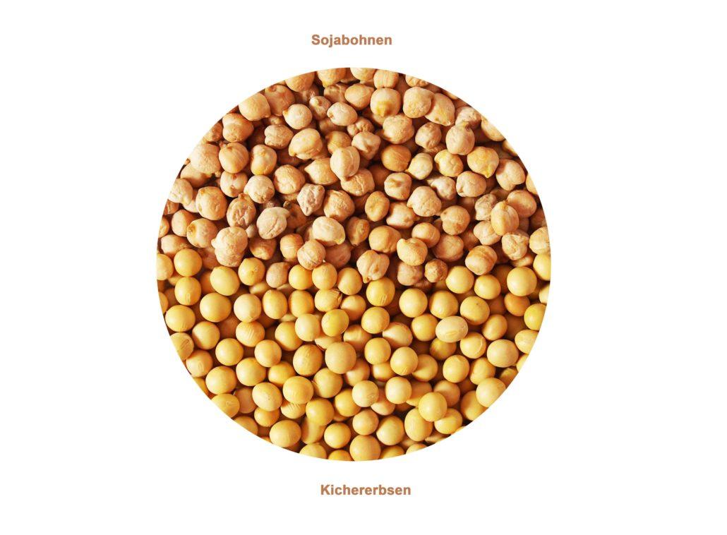 Getreide, Pseudocerealien, Hülsenfrüchte - wo liegt der Unterschied